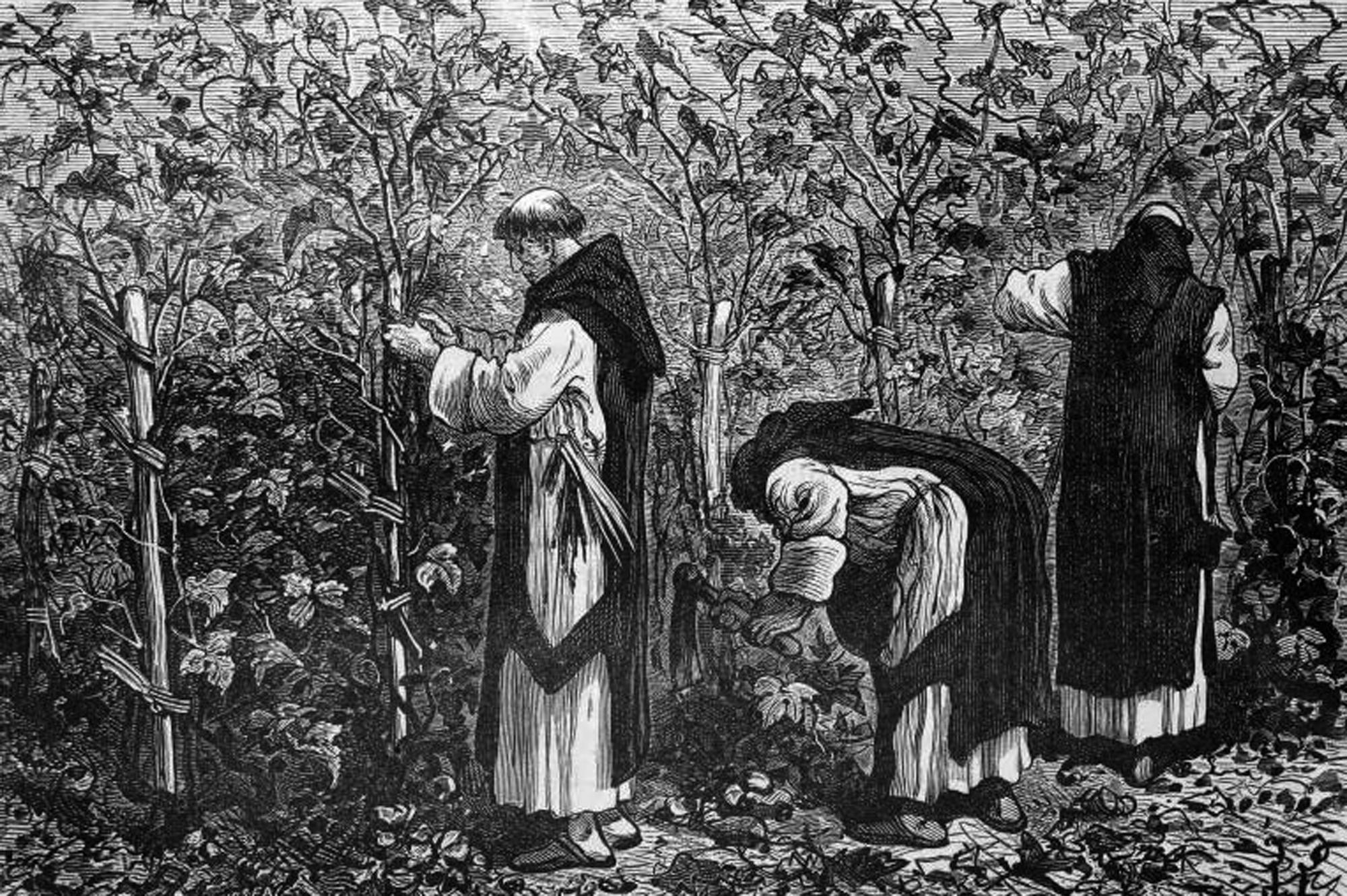 Il contributo dei monaci alla bonifica del piano reatino