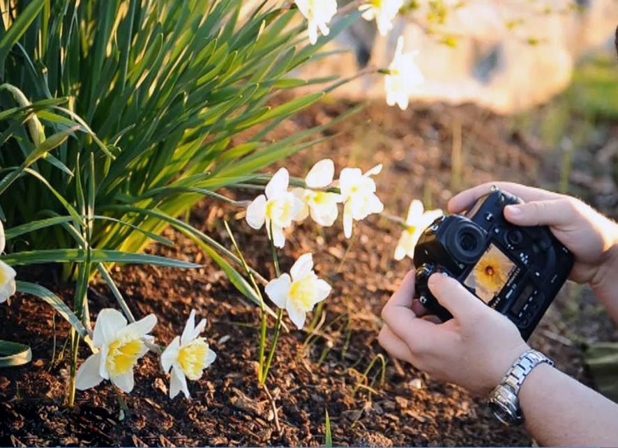 Con Francesco nella Valle / Premiazione contest floreale e contest fotografico